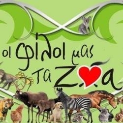Προβολή ντοκιμαντέρ «Οι φίλοι μας τα ζώα»