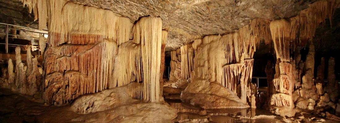 Μονοήμερη εκδρομή ΚΑΠΗ στη Βυτίνα – Σπήλαιο Κάψια