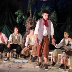 Δελτίο τύπου θεατρικής παράστασης «Όνειρο Καλοκαιρινής Νύχτας»